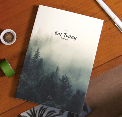 2017 diaries diary [2017 diaries, diary 2017, 2017 diary]
